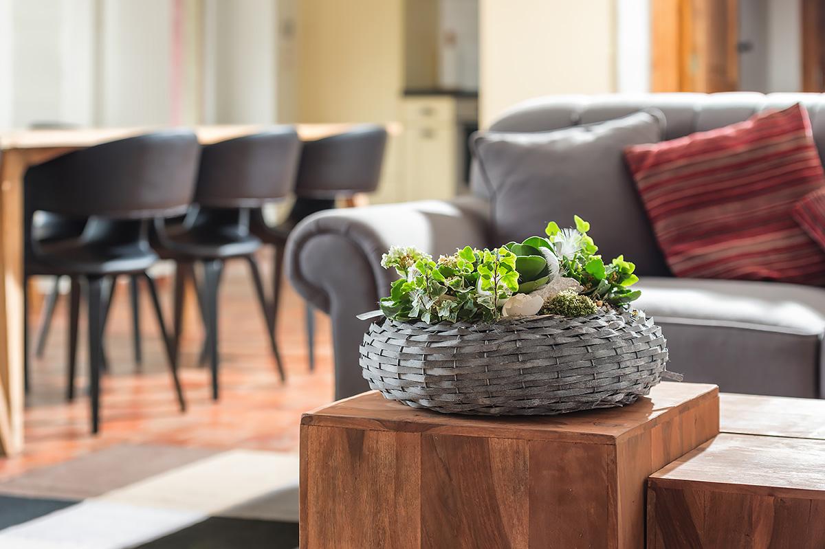 groen brengt sfeer in vakantiehuis in de vlaamse ardennen
