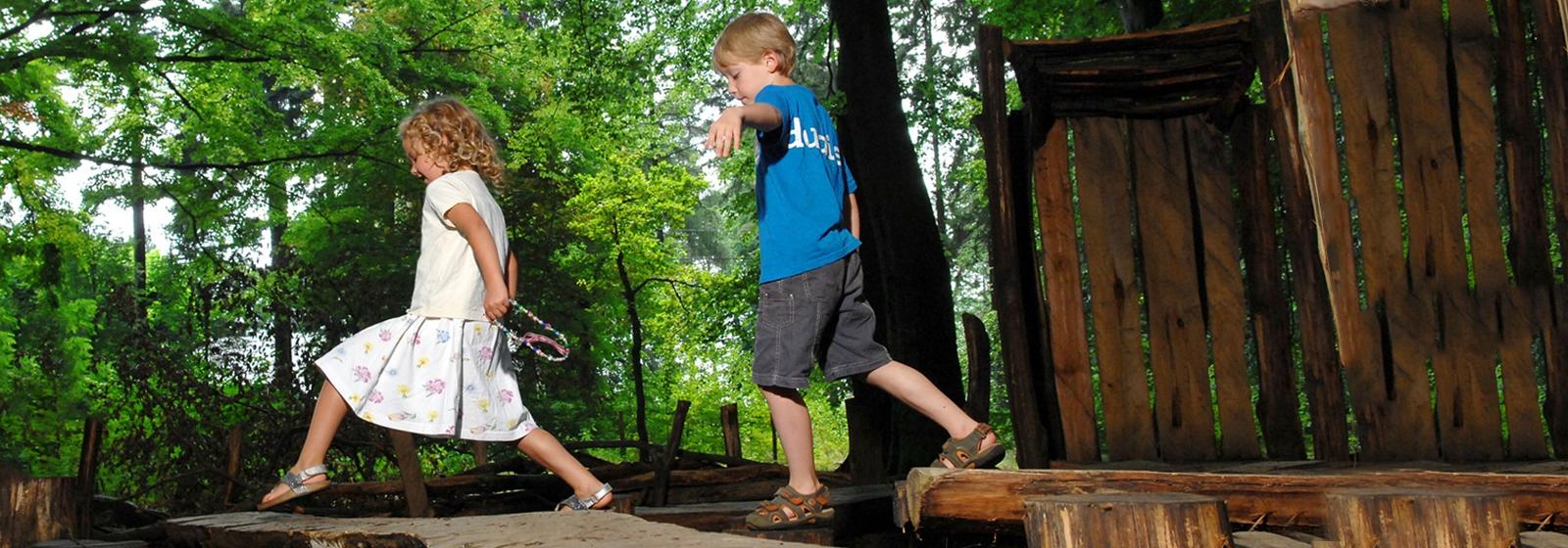 spelende kinderen in het bos vlaamse ardennen