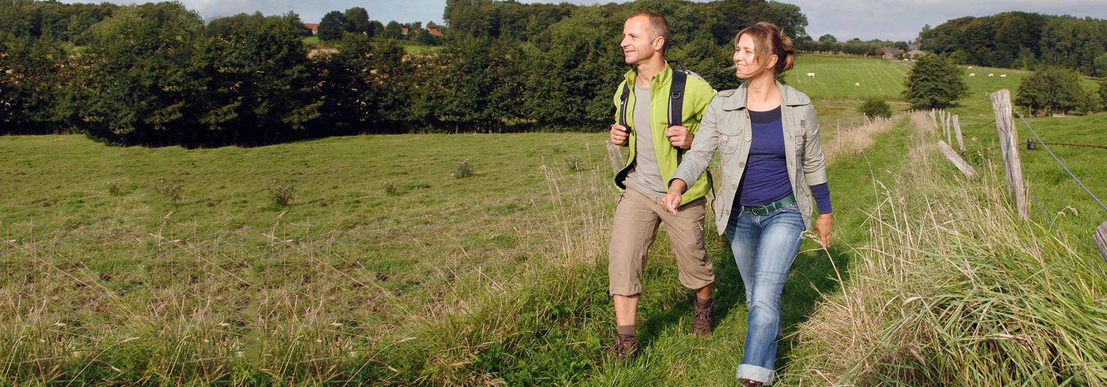 wandelaars in het groen in de vlaamse ardennen en zwalmstreek
